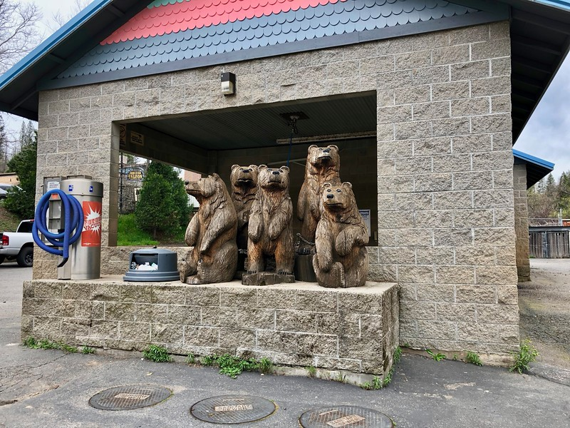 Grizzlies at the Car Wash
