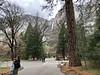Yosemite Falls and Village