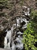 Tamarack Creek above the road