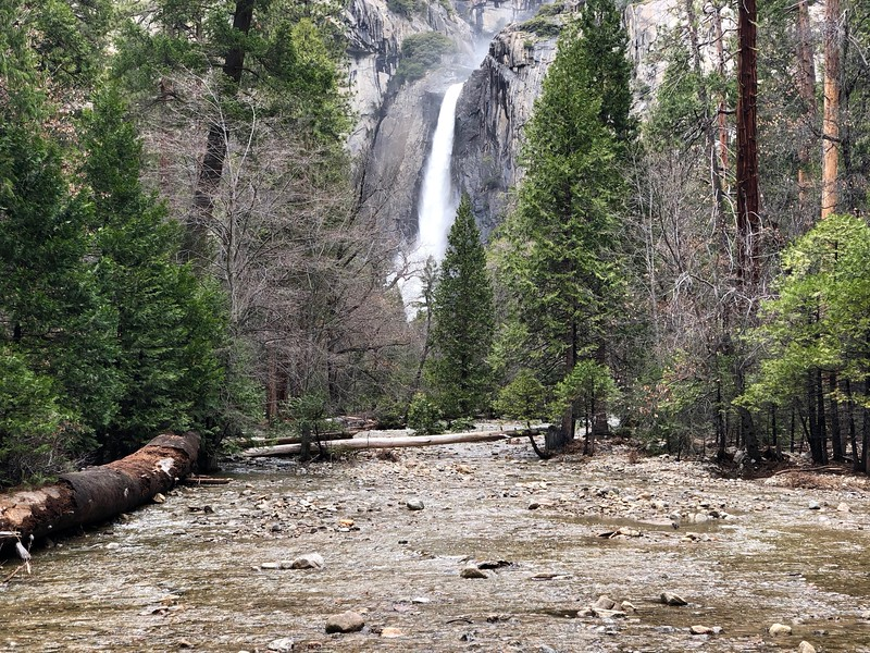 Lower Yosemite Falls over the middle branchof the creek