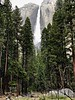 Yosemite Falls in the Afternoon