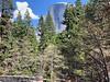 Half Dome from the Sugarpine Bridge
