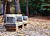 1930s Granite Bench in the Forest. B&W version among the last images in this gallery.