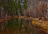 A placid section of the Merced River.