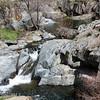 Creek feeding into the Merced, Railroad Flat