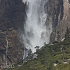 Yosemite Falls in a strong, blustery wind