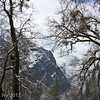 Yosemite walls in snow and fog