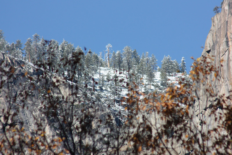 Snow on the rim