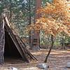Bark shelter