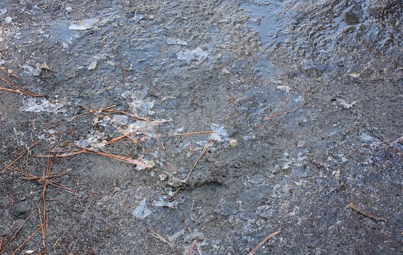Ice on the ground
