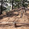 Ritual lodge roof