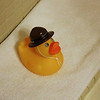 Ranger duckie in the bathroom