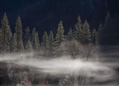 Swirling mist, Ahwahnee meadow