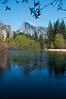 California 2011-6175