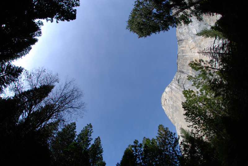 """<span id=""""title"""">El Capitan</span> This was our last stop before heading back to LA. It's pretty impressive to be at the bottom of such a giant rock face, especially knowing that people actually climb it."""