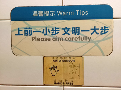 Contradictory instructions on the Chinese urinals. Is one supposed to use their hands to aim carefully or not?