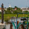 These flamingos were feeding right in the town of Rio Lagartos