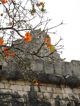 Yucatan: tierra de Mayas