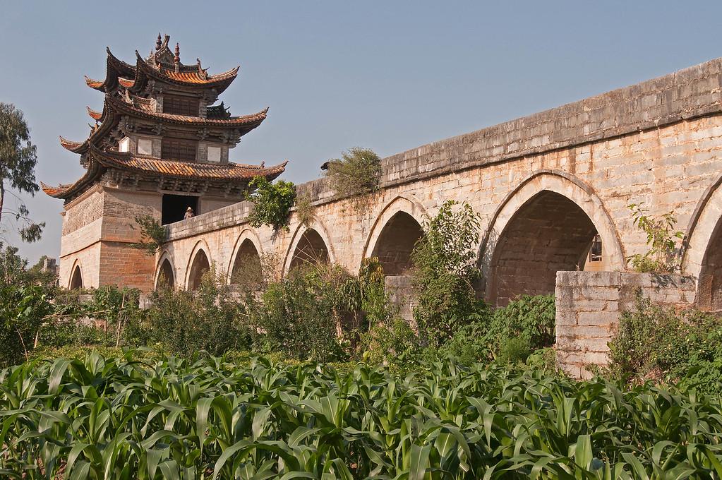 China 1120