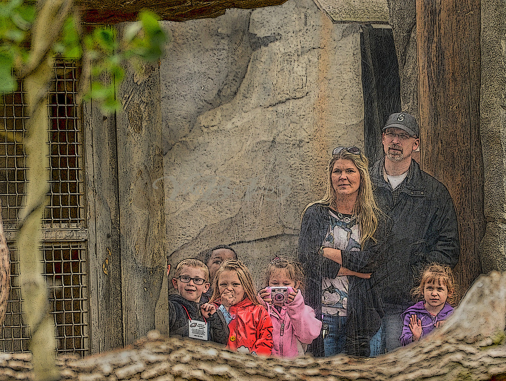 ZOO CHICAGO (160)A2