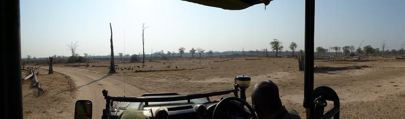 Mopane Graveyard
