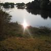 Zambia_Sindabezi_Island_12