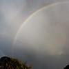 Zambia_Victoria_Falls_Livingstone_Island_12