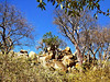 and lovely rural scenery. This is a rocky spot right along the major road going north from Francistown,
