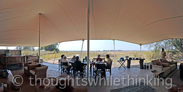 Lunch under a panoramic canvas at Busanga Bush Camp in Kafue NP.