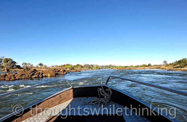 Back out on the Zambezi River for a tour in a Toka Leya powerboat.