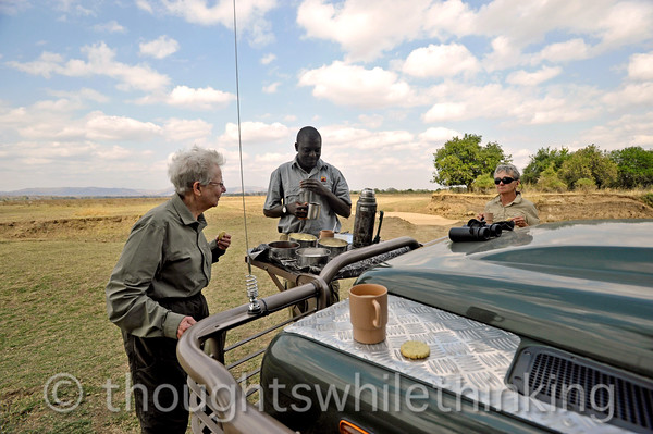 The usual and much enjoyed tea and cookies stop on the morning game drive.