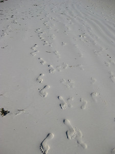 Paje Beach: The sand is more fine than sugar, almost like powdered sugar!