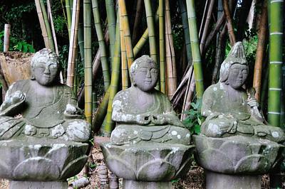 Zao 蔵王