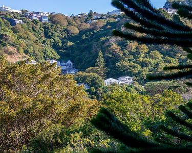 Auckland  - Botanical Gardens