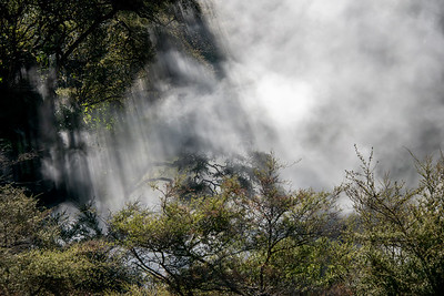 Near Rotorua  - Waimangu Volcanic Valley