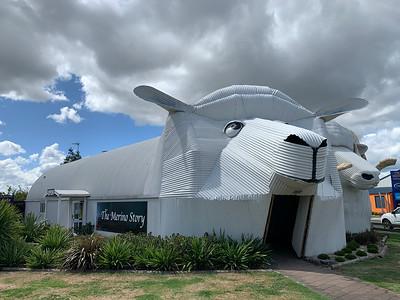 Near Rotorua