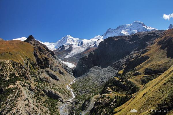 Looking towards the Gorner glacier.