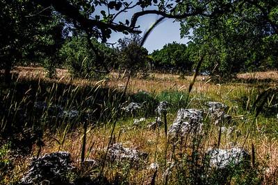 Ziknei Tzion Hermon  Mount Cahal