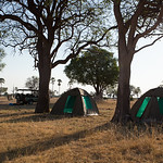 Fly camp on Hwange Walking Safari