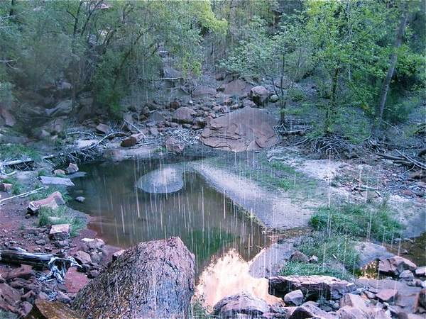 Emerald Pool, Zion National Park