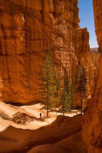 Switchback Navajo Trail loop