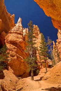 View from Below at the Hoodoos, Navajo Trail Loop