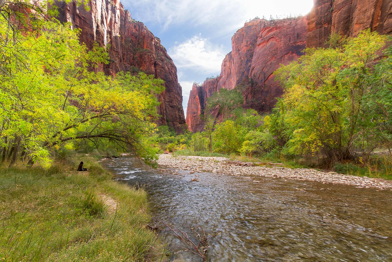 Enjoying nature - Zion