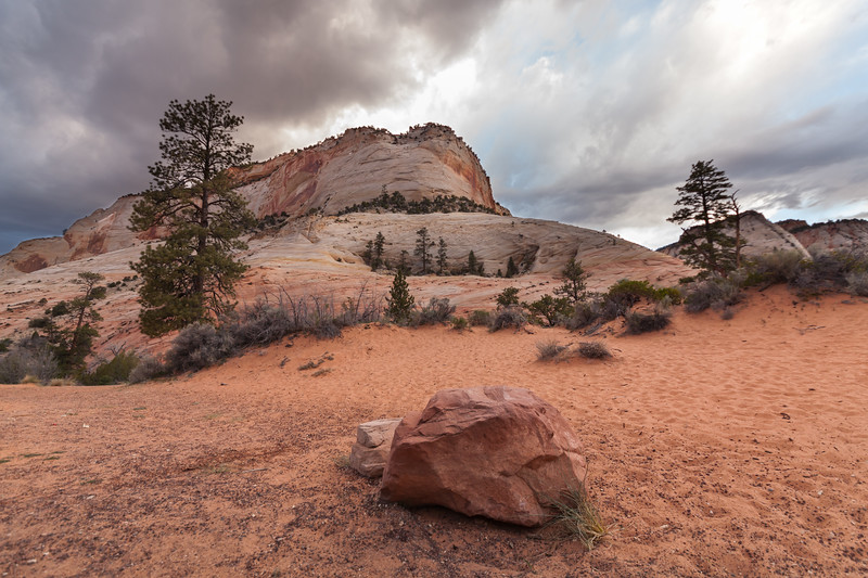 Checkerboard Mesa, Mount Carmel, Utah, USA