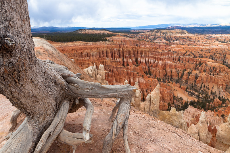 Bryce Canyon National Park, Utah, USA