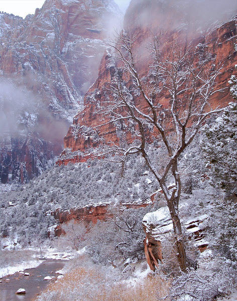 Zion Winter Storm