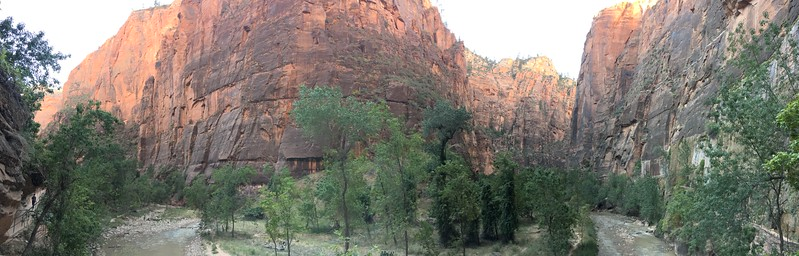 Zion Canyon walls from the trail
