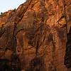 Zion Cliffs