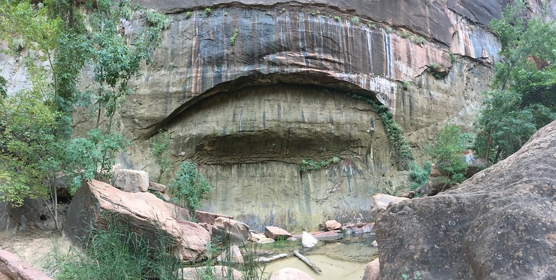 The weeping wall