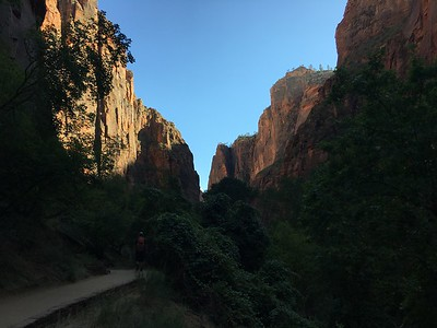 Riverside Walk in Zion NP